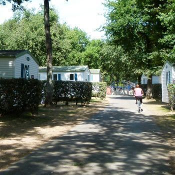 Camping Domaine Les Charmilles **** : Pitches