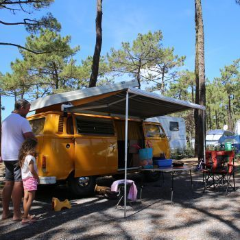 Camping L'Océan ***** : Pitches