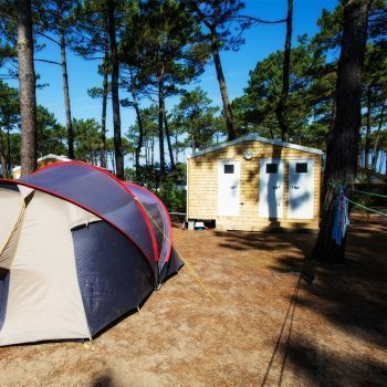 Camping Le Vieux Port ***** : Pitches