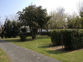 Camping Oléron **** : Emplacements