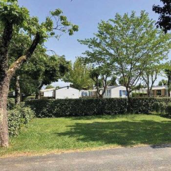 Camping Soleil Levant  **** : Emplacements